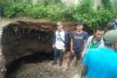 Tanah Amblas di Kampung Palung Pusing