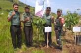 PT.Inalum, Perum Jasa Tirta I dan Pemkab Samosir MoU PKS Tripartit Tentang Konservasi Danau Toba.