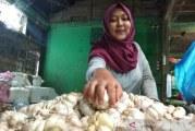 Harga bawang putih di pasar induk Garut turun drastis