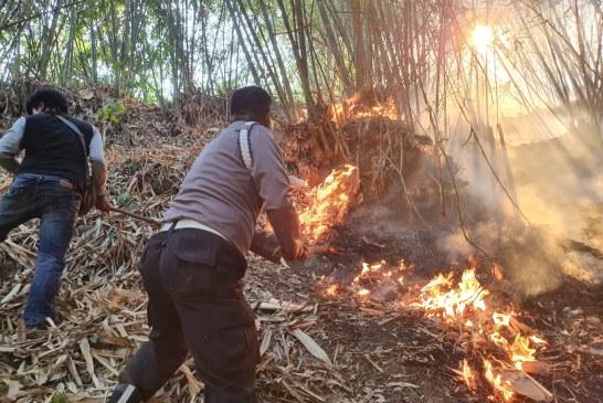 Dalam Satu Hari Sembilan Peristiwa Kebakaran Semak Belukar