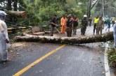 Bandung Selatan Wilayah Rawan Bencana di Musim Penghujan